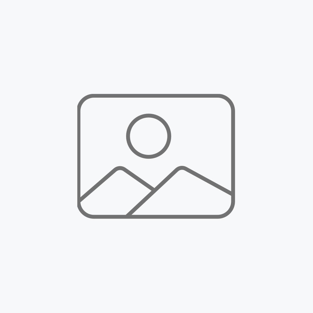 Reflector LED con sensor de movimiento, panel solar y batería recargable